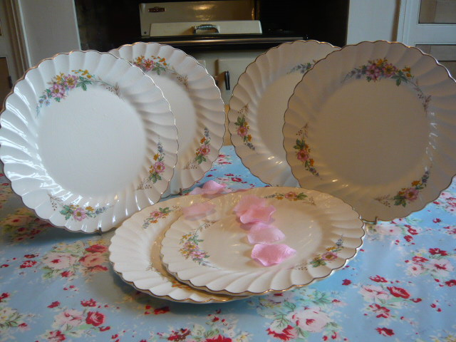 Z/SOLD  - A SET OF VINTAGE DINNER PLATES BY MYOTT - OLDE CHELSEA